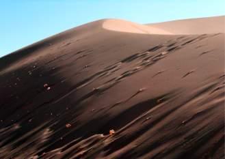 Deserto - Atacama