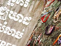 Laccetti colorati appesi su un albero utilizzato dai Khmer Rossi per uccidere i bambini, memoriale di Choeung Ek, Phnom Penh (Cambogia)
